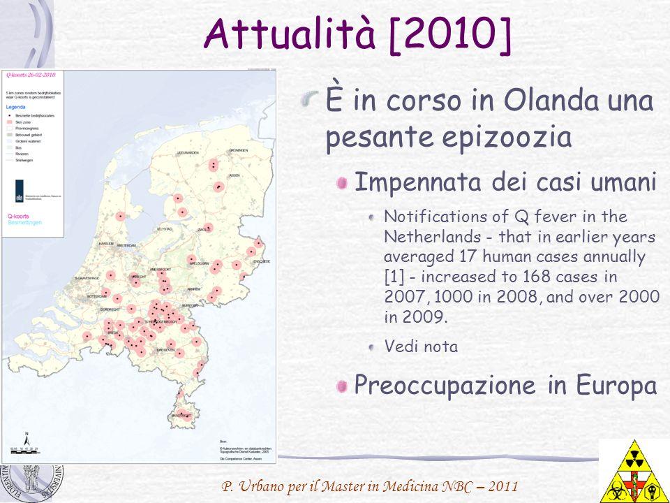 Attualità [2010] È in corso in Olanda una pesante epizoozia
